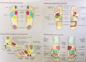 FullSizeRender(5zones réflexogènes du piedb